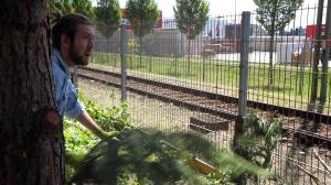 Permakultur Berlin gardening
